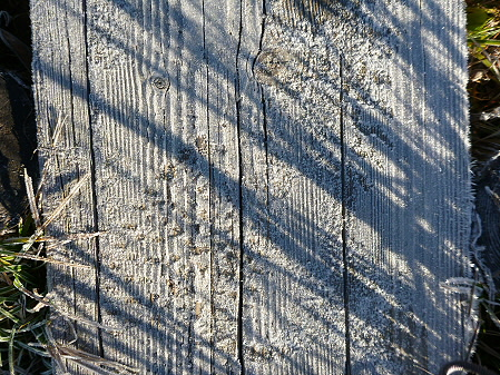 黒谷地湿原02(2012.10.8)