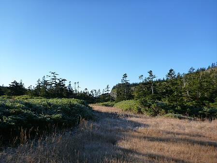 黒谷地湿原06(2012.10.8)