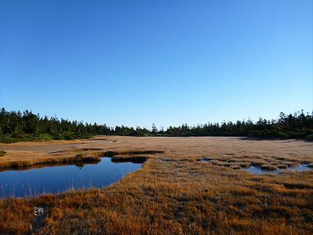 黒谷地湿原12(2012.10.8)