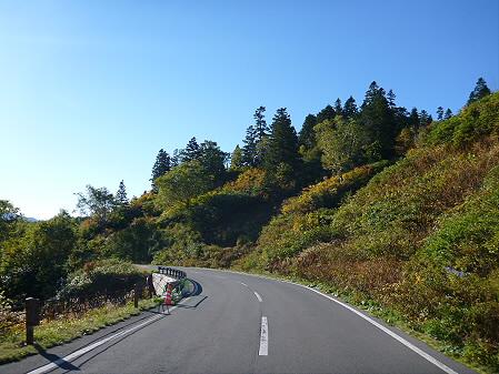 樹海ライン08(2012.10.8)