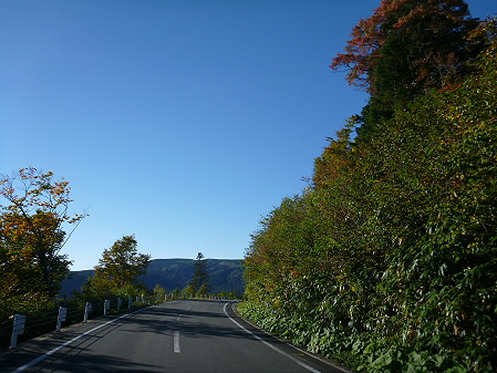 樹海ライン09(2012.10.8)