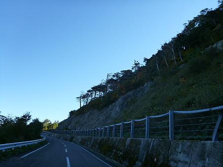 樹海ライン23(2012.10.8)