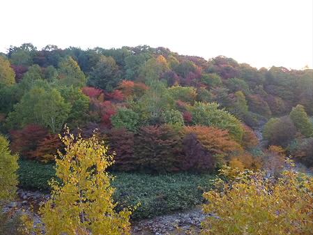 紅葉の八幡平へvol.113(2012.10.16)