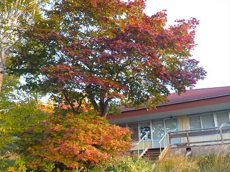 紅葉の八幡平へvol.116(2012.10.16)