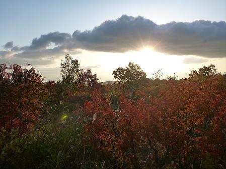紅葉の八幡平へvol.203(2012.10.16)