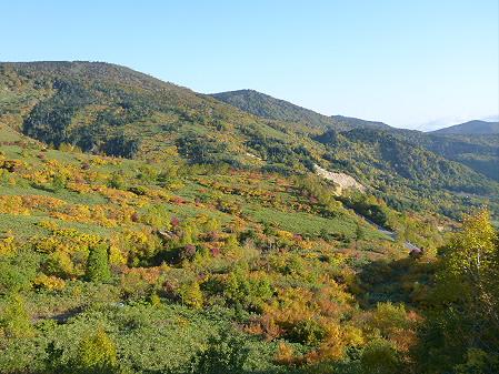 紅葉の八幡平へvol.235(2012.10.16)