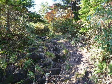 紅葉の八幡平へvol.427(2012.10.16)