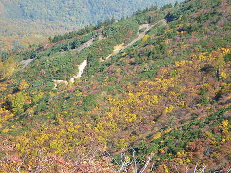 紅葉の八幡平へvol.5051(2012.10.16)