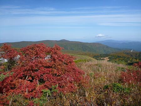紅葉の八幡平へvol.537(2012.10.16)