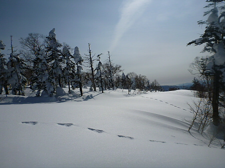 八幡平樹氷vol.4 27(2012.3.1)