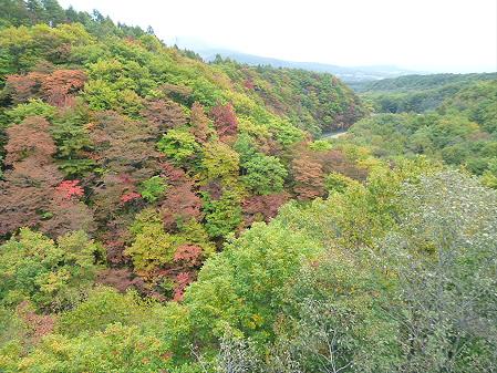 森の大橋01(2012.10.18)