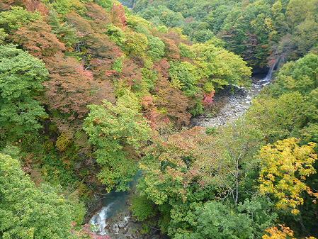 森の大橋04(2012.10.18)
