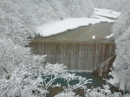 森の大橋02(2012.3.28)