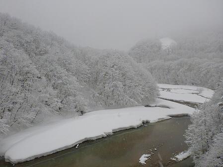森の大橋04(2012.3.28)