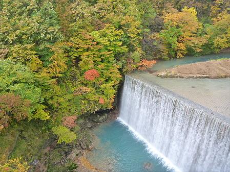 森の大橋04(2012.10.23)