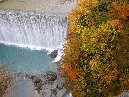 森の大橋05(2012.10.23)