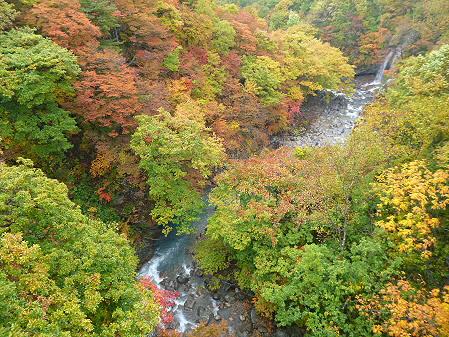 森の大橋06(2012.10.23)