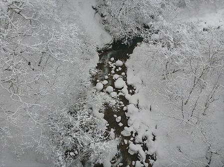 森の大橋07(2012.3.28)