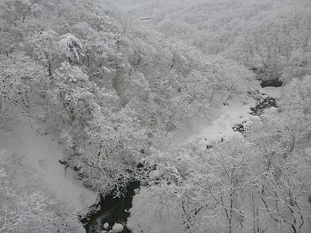 森の大橋08(2012.3.28)