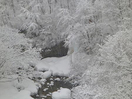 森の大橋09(2012.3.28)