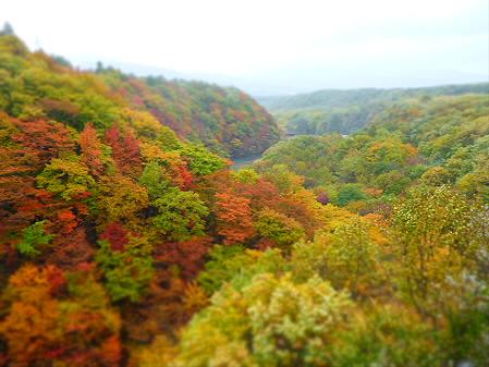 森の大橋10(2012.10.23)