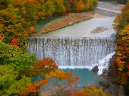 森の大橋12(2012.10.23)