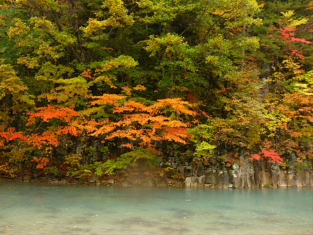 松川渓谷玄武岩10(2012.10.23)