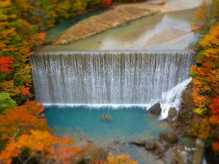 森の大橋01(2012.10.25)