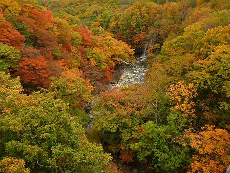 森の大橋05(2012.10.25)