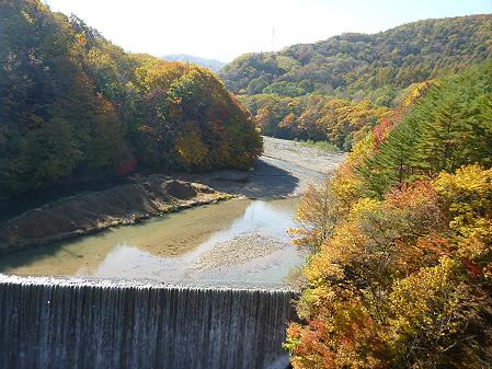 森の大橋02(2012.10.26)