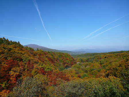 森の大橋05(2012.10.26)