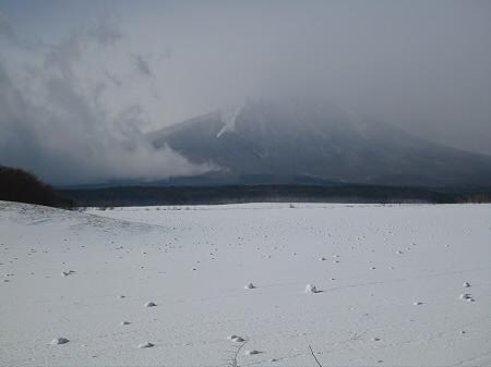 上坊牧野の自然雪玉01(2012.4.5)
