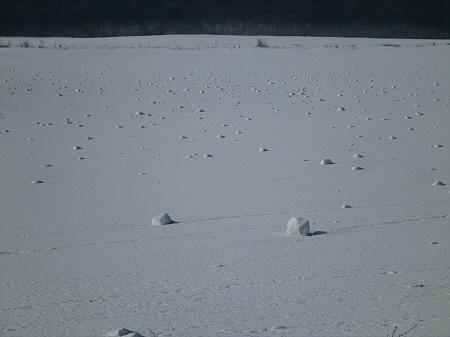 上坊牧野の自然雪玉03(2012.4.5)