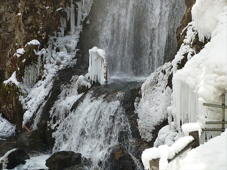 不動の滝14(2012.4.8)