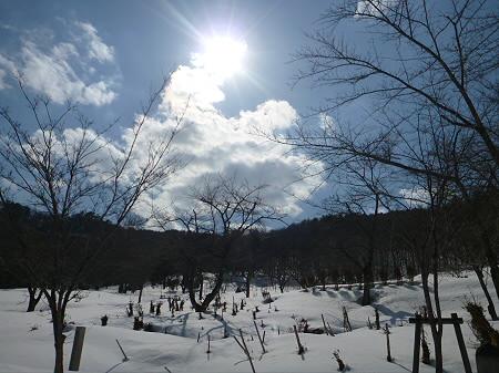 不動の滝17(2012.4.8)