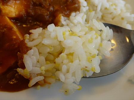 学校の宿 希望の丘「豆腐のカレー」23(2012.4.8)