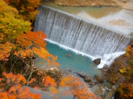 森の大橋02(2012.10.30)