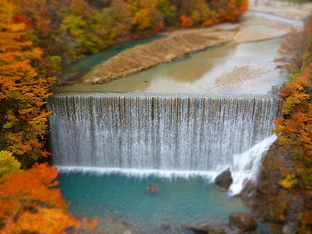 森の大橋03(2012.10.30)