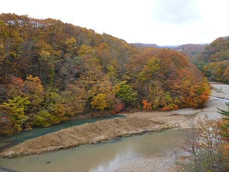 森の大橋04(2012.10.30)