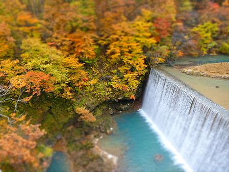 森の大橋06(2012.10.30)