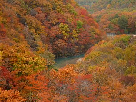 森の大橋10(2012.10.30)
