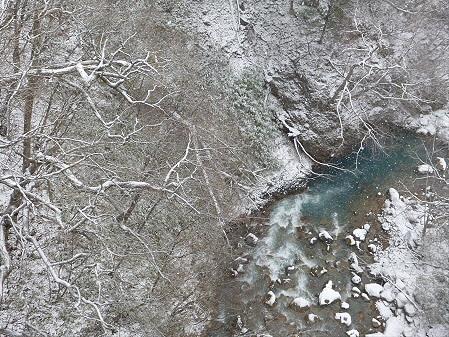 森の大橋08(2012.12.5)