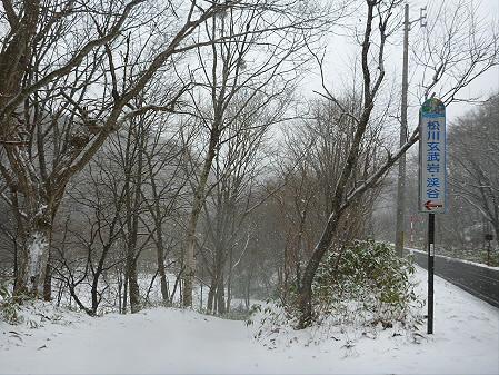 松川渓谷玄武岩03(2012.12.5)