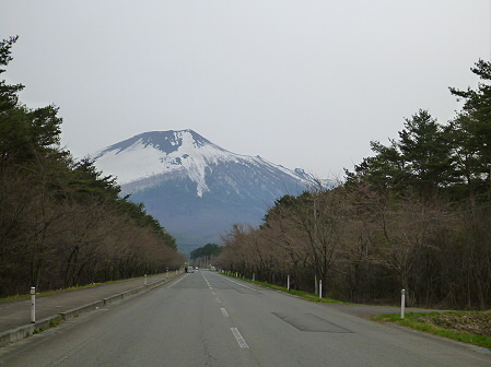 上坊牧野入口付近の桜並木01(2012.4.30)