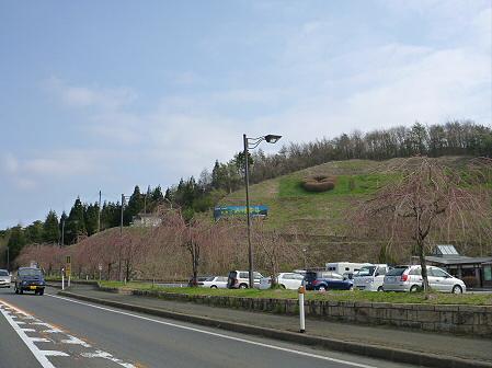道の駅にしねの桜01(2012.5.1)