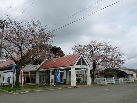 八幡平トラウトガーデンの桜03(2012.5.2)