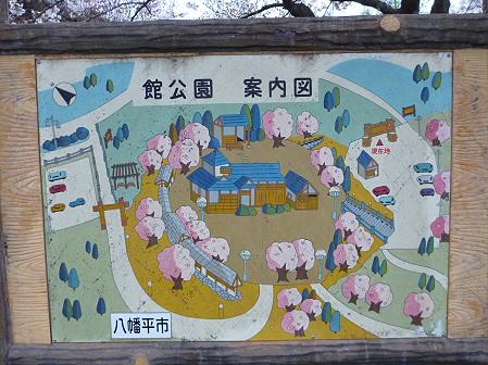舘公園の桜17(2012.5.2)