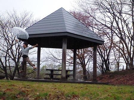 八幡平市さくら公園の桜01(2012.5.3)ジャンプ!