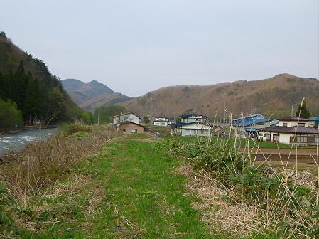 安比川の桜並木18(2012.5.7)