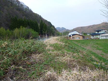 安比川の桜並木19(2012.5.7)